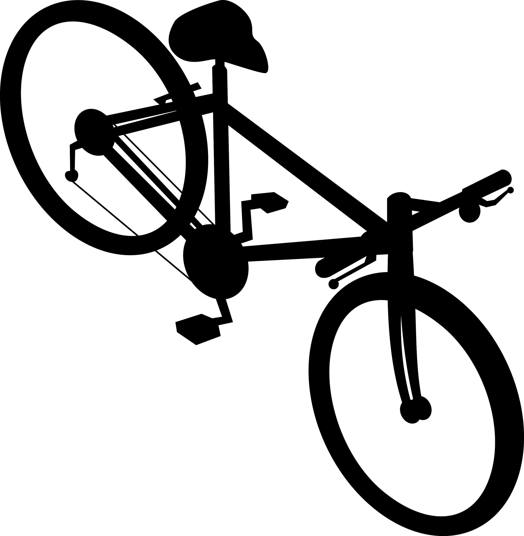 racing-bicycle-bike_G1B4HPLd_L.jpg